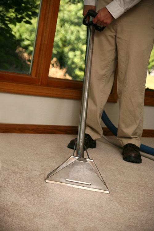 Carpet Cleaning in Moscow