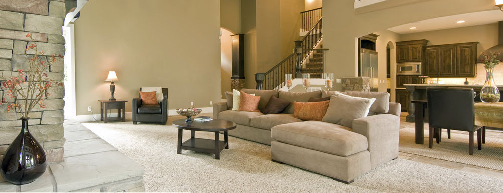 Carpet Cleaning Banning