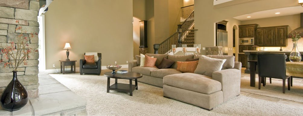 Carpet Cleaning Normal
