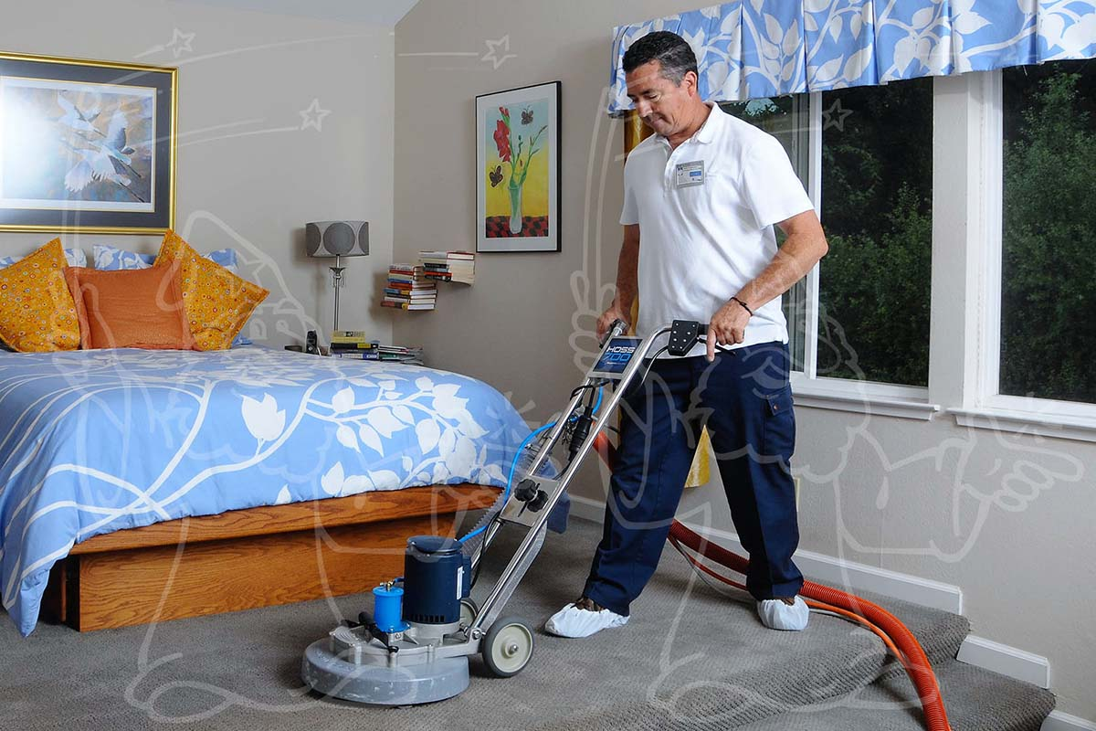 Cleaning Process Steps Photo Example for Your Carpet Cleaning Business