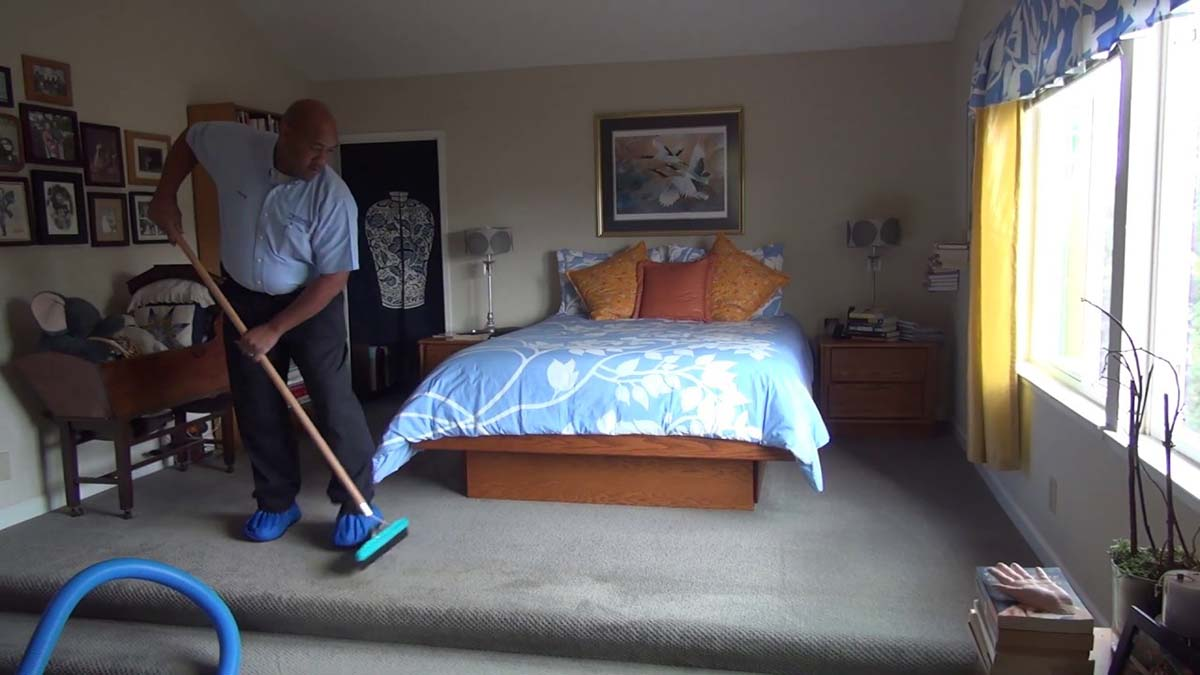 Carpet Grooming Scene For Your Carpet Cleaning Marketing Video